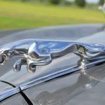 jaguar MKII Saloon 3.4 overdrive 29
