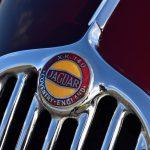 Jaguar XK140DHC 33