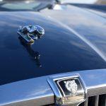 Jaguar XJ12 saloon 20